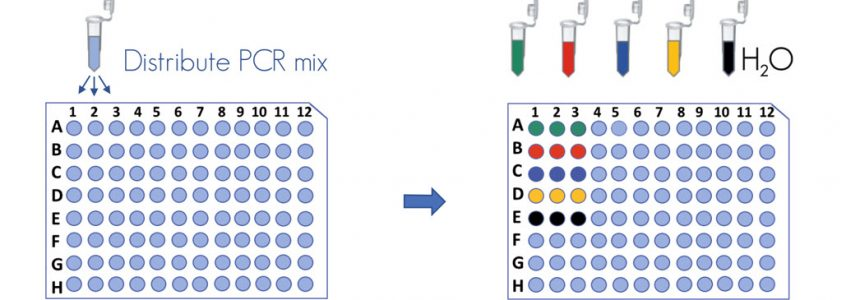 front DNA kit methylation